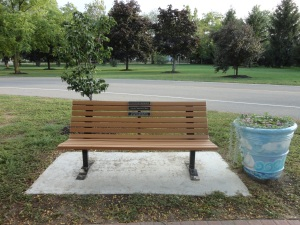 Olander_bench